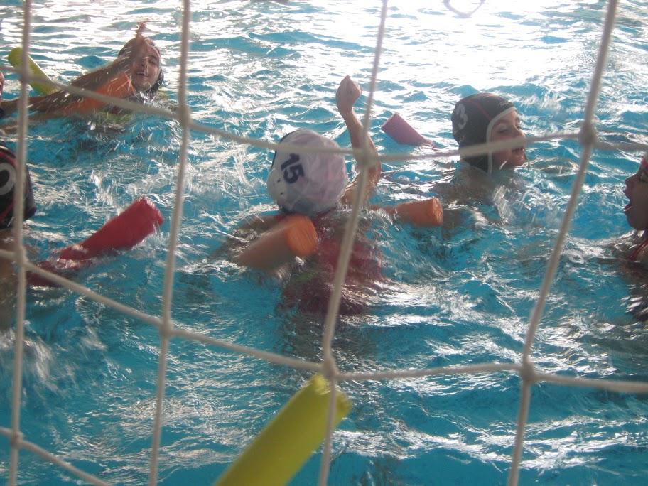 Jornada d'iniciació esportiva de natació