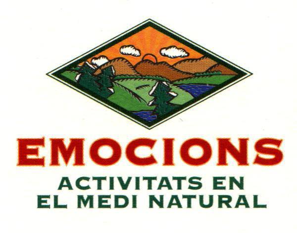 Activitats a la natura: colònies esportives