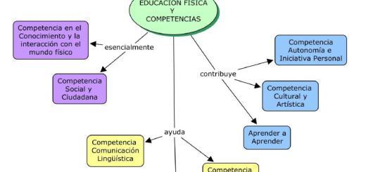 Las competencias básicas desde la Educación Física