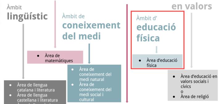 Avançament del nou currículum d'educació física per a l'educació primària