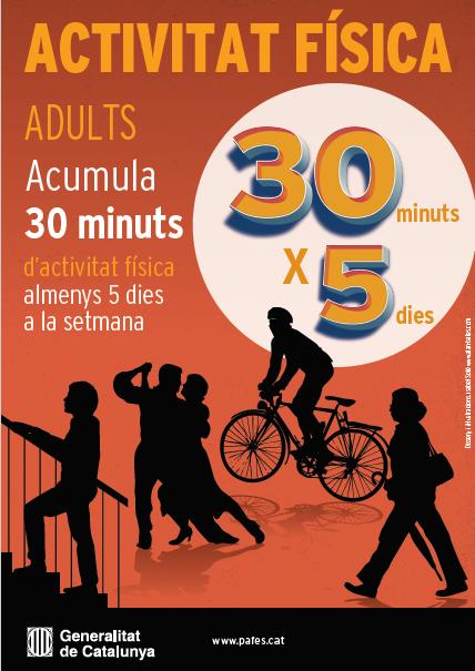 activitat-adults
