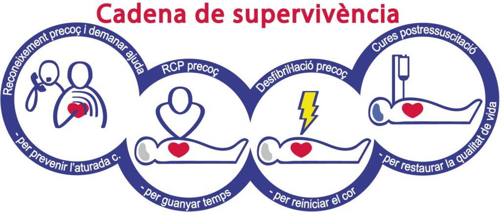 Primers auxilis: concepte de cadena de supervivència